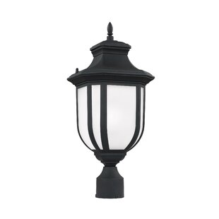 Teri Outdoor 1-Light LED Lantern Head