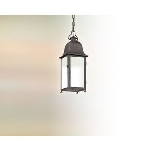 Darby Home Co Susannah 1-Light Outdoor Hanging Lantern