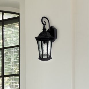 Deidamia LED Outdoor Wall Lantern by Springdale Lighting
