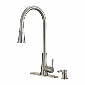 Dyconn Faucet Celtic Single Handle Pull-Out Standard Kitchen Faucet with Soap Dispenser