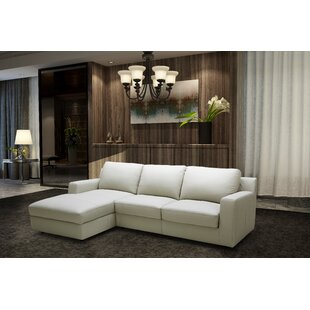 J&M Furniture Leather Sleeper Sectional