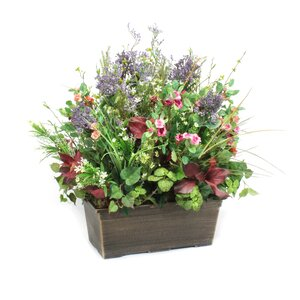 Wildflowers and Blossoms in Lightweight Window Box