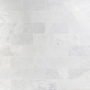 6x12 Marble Tile Wayfair