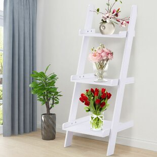 Ohalloran Ladder Bookcase