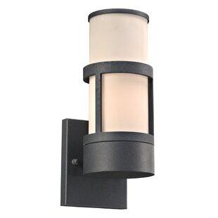 Ebern Designs Lutterworthd 1-Light Outdoor Sconce