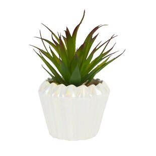 Perfect For Planting Blooming Artificial Artificial 20cm Green Agave Succulent on Spike Realistic Fake Succulent Foliage