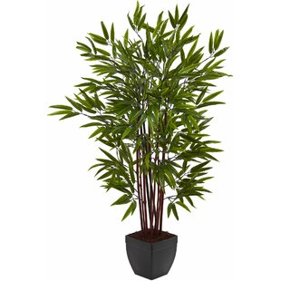 Modern Faux Plants + Florals | AllModern
