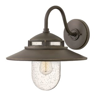 Hellebore 1-Light Outdoor Barn Light