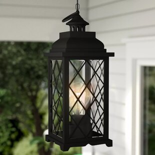 Priscila Battery-Operated 1 Light LED Outdoor Hanging Lantern