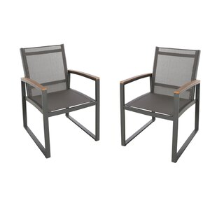 Moriarty Patio Dining Chair (Set of 2)