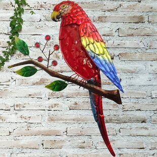 Parrot Wall Décor By Sol 72 Outdoor