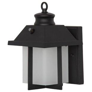 Braud Outdoor Wall Lantern
