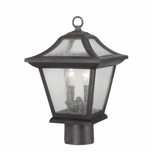 Best Reviews Vanleer 2-Light Lantern Head By Winston Porter