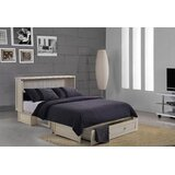 Cossette Queen Storage Murphy Bed with Mattress by Rosecliff Heights