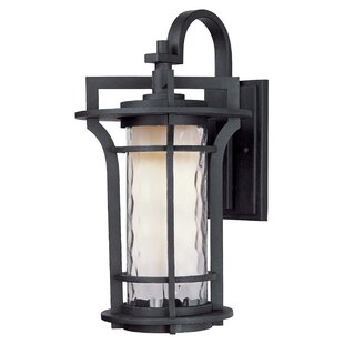 Millwood Pines Espitia 1-Light Outdoor Wall Lantern