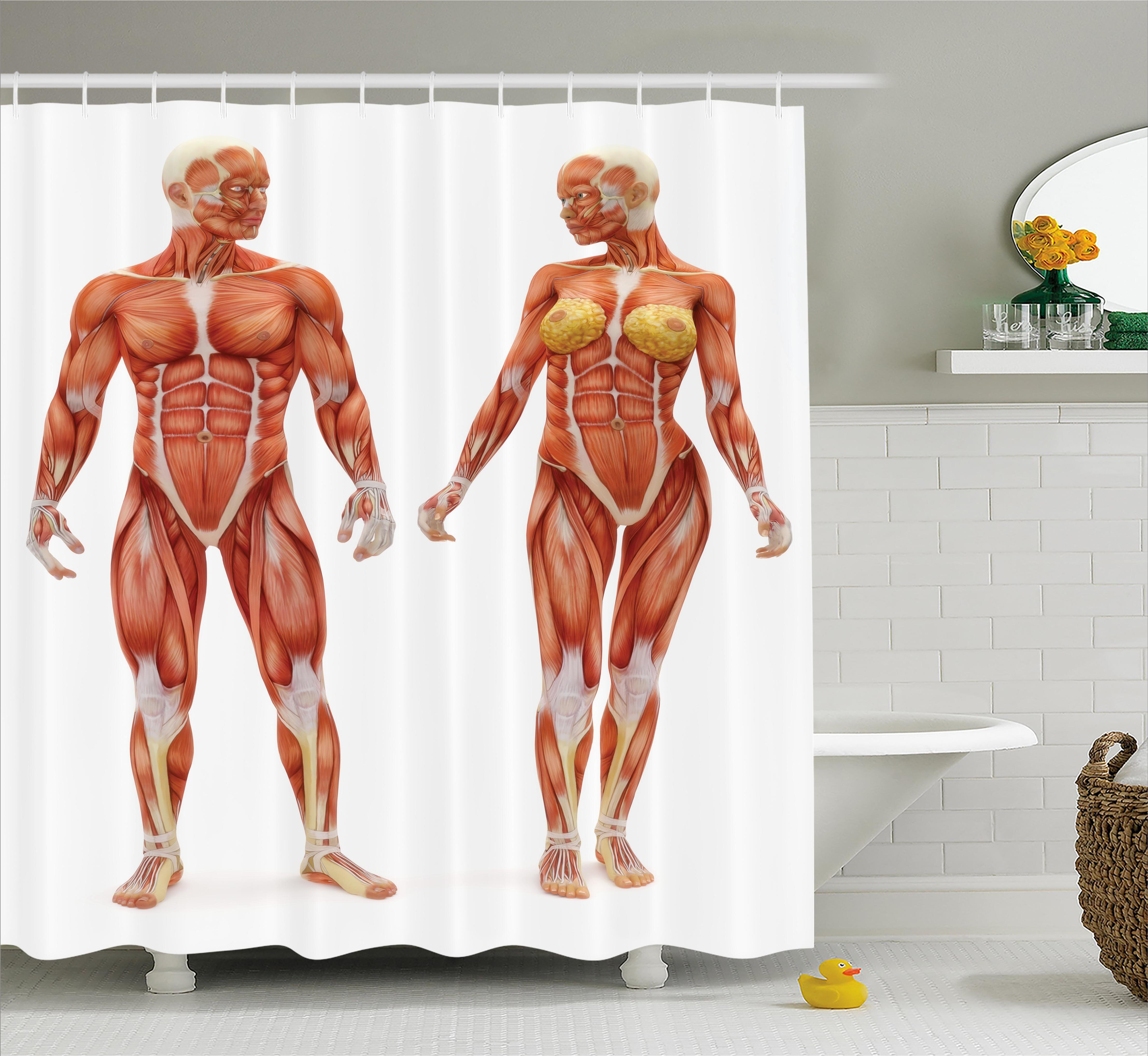 Ambesonne Human Anatomy Male And Female Bodies With Inner Mass Build