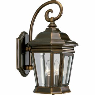 Alcott Hill Triplehorn 2-Light Outdoor Panels Wall Lantern
