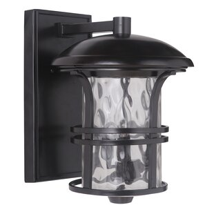Darby Home Co Concetta 3-Light Outdoor Wall Lantern