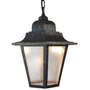 Where buy  Flannigan 1-Light Outdoor Hanging Lantern By Charlton Home