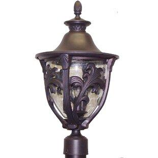 Alcott Hill Phillipstown 3-Light Lantern Head