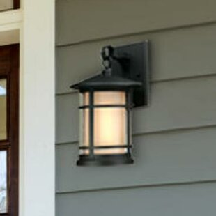 Compare Albright Outdoor Wall Lantern By Westinghouse Lighting