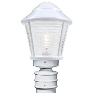 Latitude Run Donnie 1-Light Frosted Glass Lantern Head