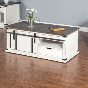 Kerensa Barn Door Coffee Table