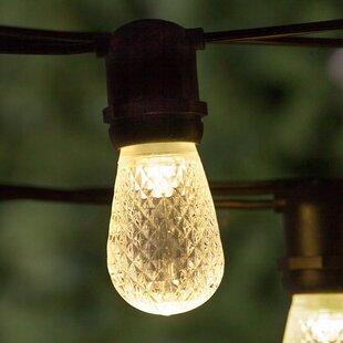54 ft. 24-Light Standard String Light by Wintergreen Lighting