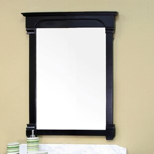 Find the perfect Osgood Mirror ByBellaterra Home