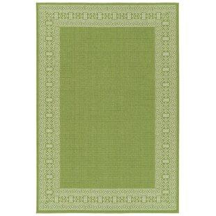 Poteet Lime Green Indoor/Outdoor Area Rug By Bloomsbury Market