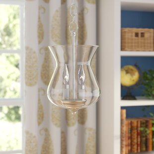 Darby Home Co Sackler 2-Light Urn Pendant