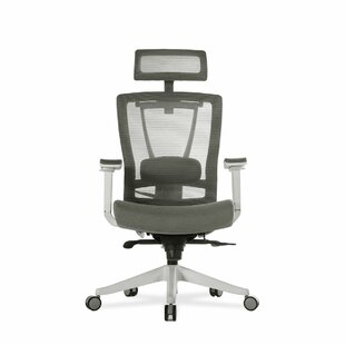 Reviews Mariam Ergonomic Mesh Office Chair by Symple Stuff