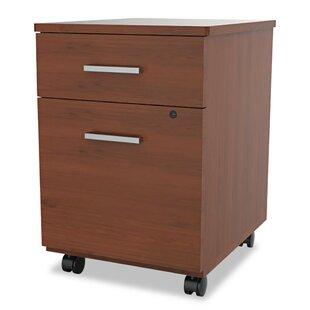 Ebern Designs Monterey 2-Drawer Mobile Vertical Filing Cabinet