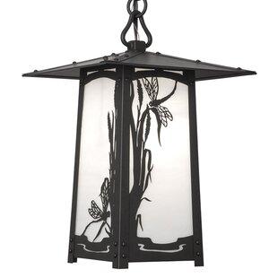 Dever 1-Light Outdoor Hanging Lantern