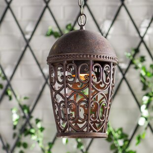 Fleur De Lis Living Claverack 1-Light Outdoor Pendant