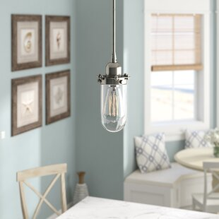 Beachcrest Home Narvaez 1-Light Urn Pendant