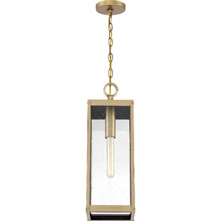 Elroy 1-Light Outdoor Hanging Lantern