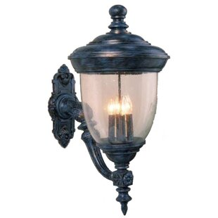 Phillipstown 4-Light Outdoor Sconce By Alcott Hill Outdoor Lighting