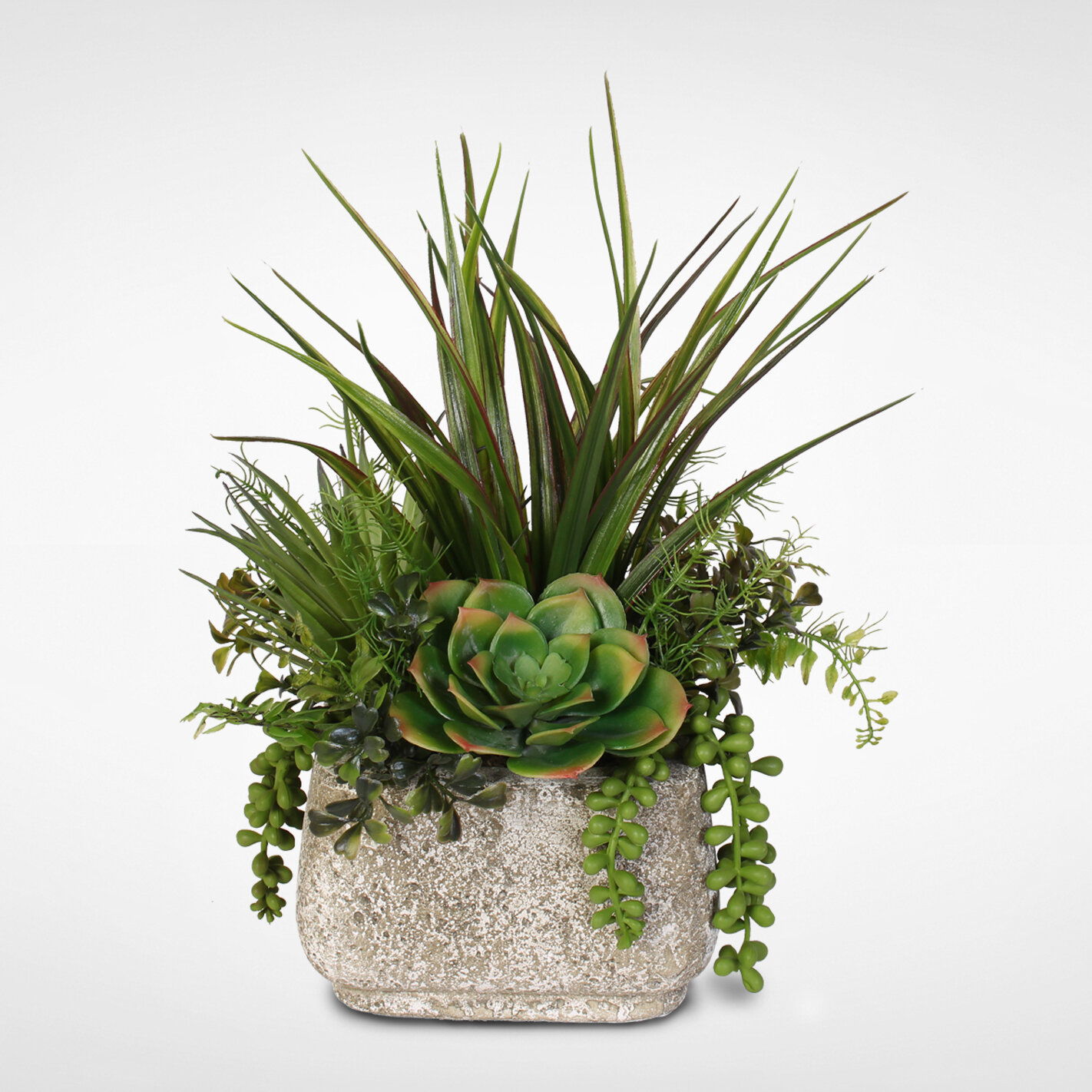 Brayden Studio Artificial Desktop Succulent Variety Plant In Pot Reviews Wayfair
