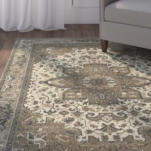 Derrymore Ivory/Gray Area Rug by Charlton Home