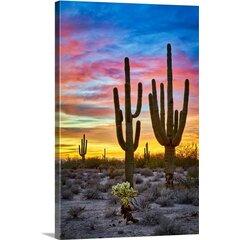 Desert Steel Saguaro Cactus Wayfair