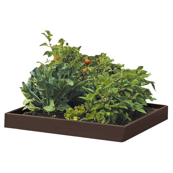 Raised Garden Beds U0026 Elevated Planters Youu0027ll Love | Wayfair