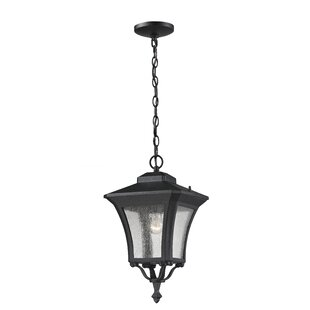 Charlton Home Digennaro 1-Light Outdoor Hanging Lantern