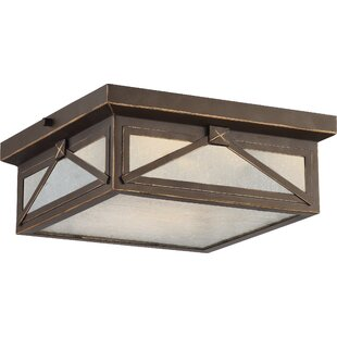 Laurel Foundry Modern Farmhouse Sagebrush 1-Light Outdoor Flush Mount