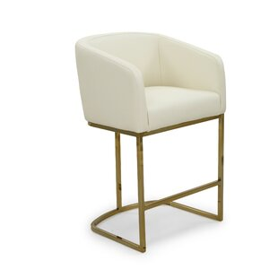 Stevan 25.25 Bar Stool by Everly Quinn