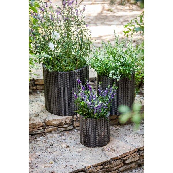 Keter 3 Piece Plastic Pot Planter Amp Reviews Wayfair