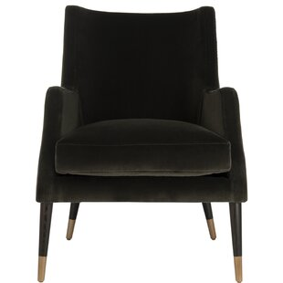 Lorinda Velvet Armchair by Everly Quinn