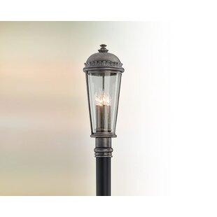 Treyton Outdoor 4-Light Lantern Head by Bloomsbury Market
