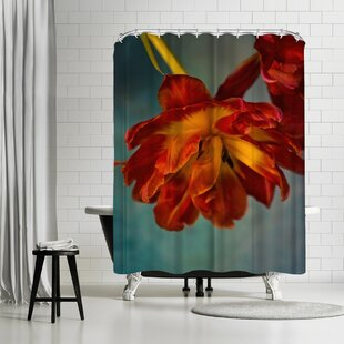 Mirja Paljakka Fiery Tulips Single Shower Curtain