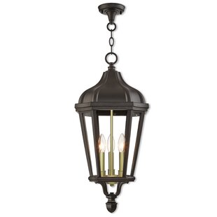 DeMotte 3-Light Outdoor Hanging Lantern